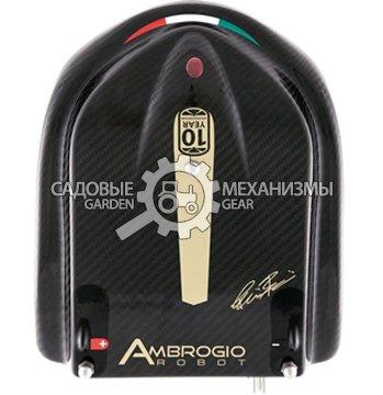 Ambrogio L200 Carbon от GARDENGEAR.RU